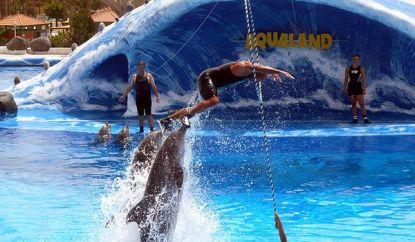 Parc aquatique Aqualand de Ténérife