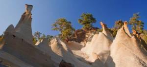 paysage lunaire couronne forêt parc ténérife