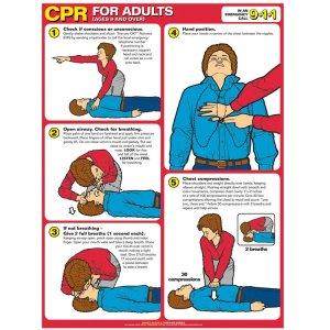 P3K: Persiapan dan Teknik CPR (Nafas Buatan)