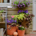 Cómo elegir contenedores de plantas al aire libre para facilitar la jardinería