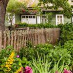 Cómo cuidar los árboles en su jardín
