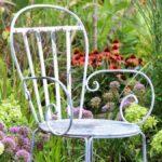 Para un jardín más saludable, cultive plantas nativas