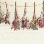 Cómo secar al aire flores frescas para decorar