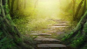 SCHIMBÂND GÂNDIREA, ÎŢI SCHIMBI VIAŢA - Adevărul despre tine