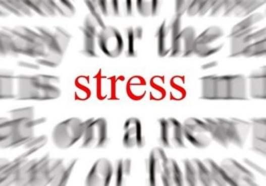 Reacţia la stres - cum conduce la boli majore?