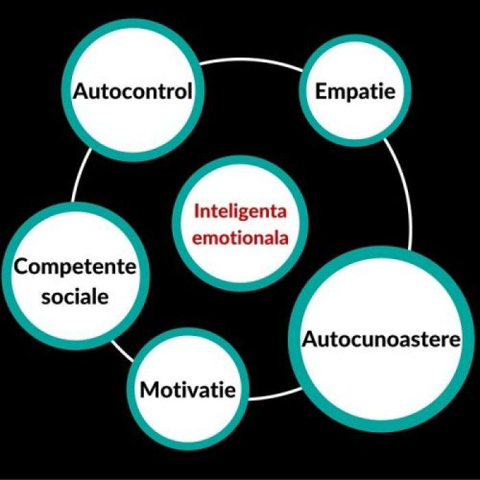 Metode de dezvoltare a Inteligenţei Emoţionale