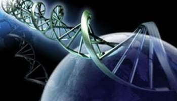 Influenţa cuvintelor asupra ADN-ULUI - recente cercetări ruseşti