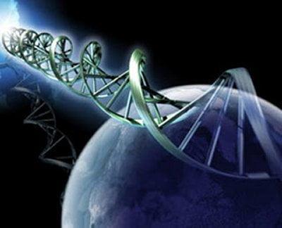 INFLUENȚA CUVINTELOR ASUPRA ADN-ULUI