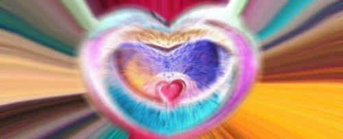 Inima iniţiatică - Iniţiaţii vorbesc despre inteligenţa inimii