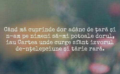 DOR de Origine Românească