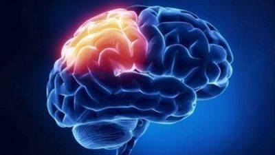 Invata creierul sa faca ce vrei tu-Creierul are capabilitati