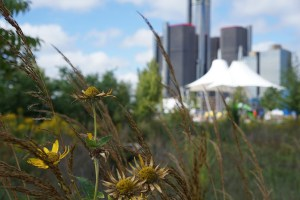 Photo of downtown Detroit from Riverfront. How would you spend $250 million to improve the city?