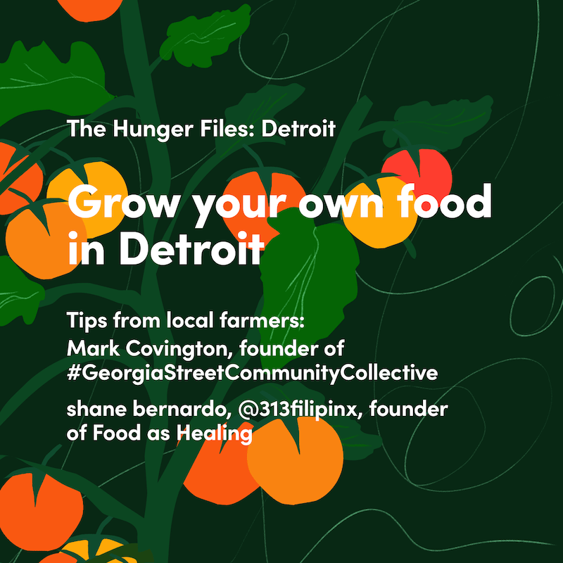 hunger files detroit local food guide to growing your own food