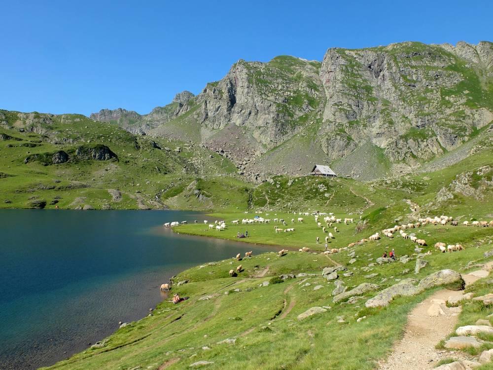 refuge lac ayous pyrénées