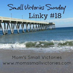 Small Victories Sunday Linky 18
