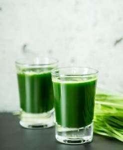 Jus d'herbe d'orge
