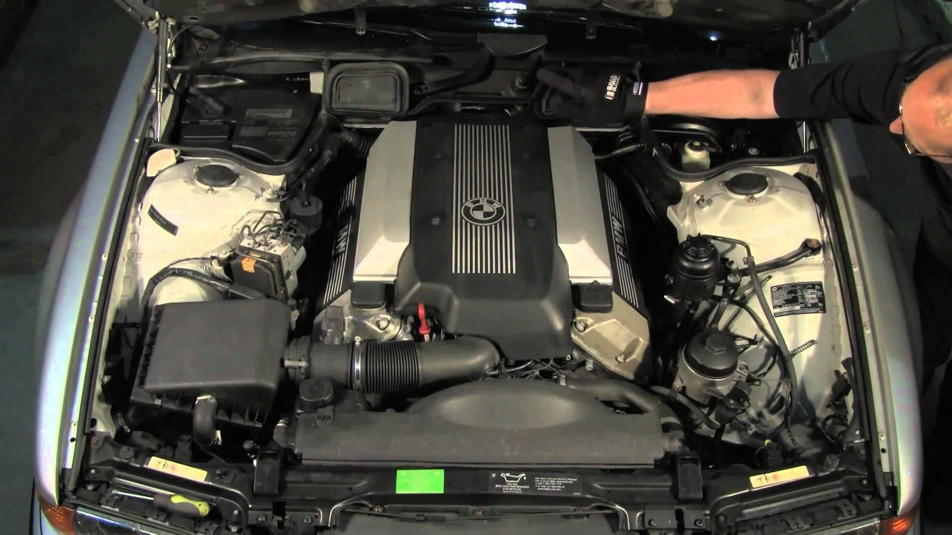 car hood engine diagram mitosis worksheet wiring