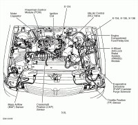 1995 ford Mustang Engine Diagram 2008 Bmw 328i Engine ...
