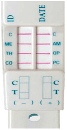 Oratect Saliva Drug Test 4