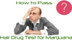 How to Pass Hair Drug Test for Marijuana