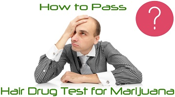 How to Pass a Hair Drug Test for Marijuana – 3 Effective Methods that Can Help You!