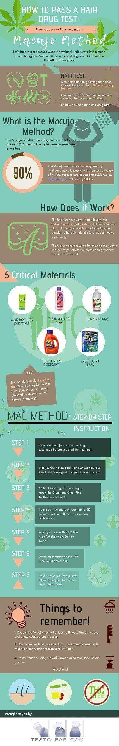 Macujo Method Infographic How to Pass a Hair Drug Test