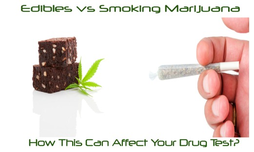 Edibles vs Smoking Marijuana -How This Can Affect Your Drug Test?
