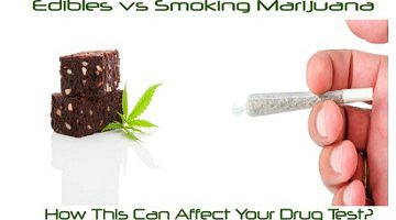 Edibles vs Smoking Marijuana – How This Can Affect Your Drug Test?