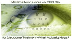 Medical Marijuana vs CBD Oil for Glaucoma Treatment