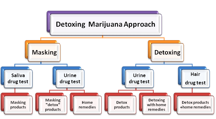Detox Marijuana Approaches Diagram