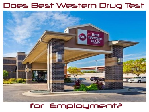 Does Best Western Drug Test for Pre-employment?