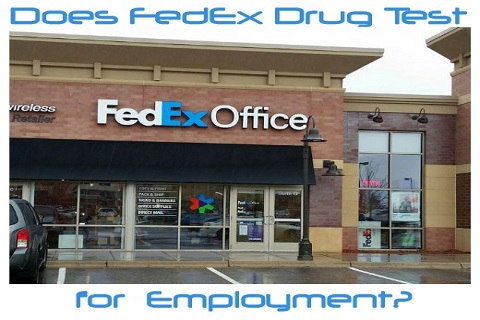 Does FedEx Drug Test for Employment?-Get the Facts Here