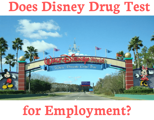Does Disney drug test for employment?
