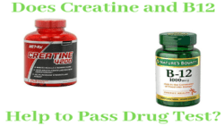 Do Creatine and B12 Help to Pass Drug Test?