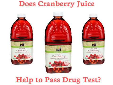 Does Cranberry Juice Help to Pass Drug Test?