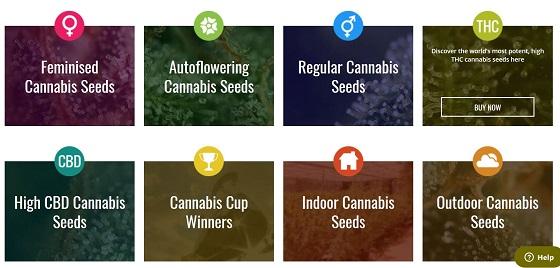 Seedsman Seeds marijuana seeds bank