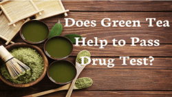 Does Green Tea Help to Pass Drug Test in 2020?