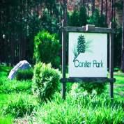 Conifer Park