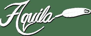 Aquila Behavioral Health