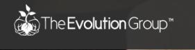 Evolution Group Inc