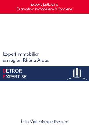 brochure Detrois Expertise