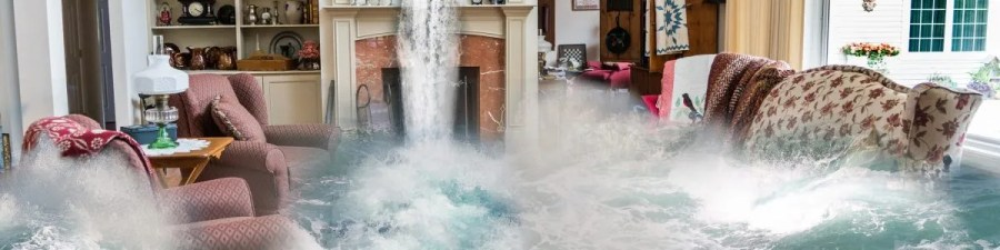 Detroit-mi_flood-damage-restoration-cleanup-companies