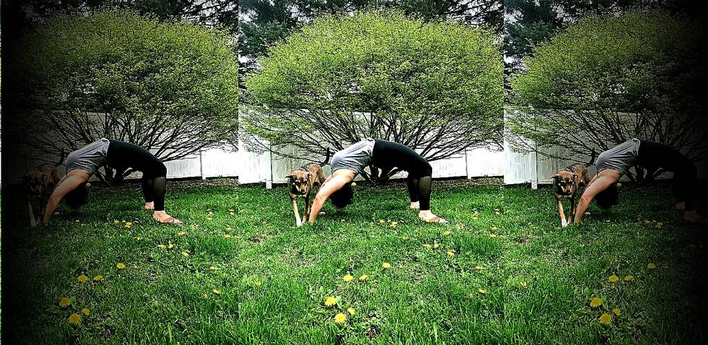 Yoga with Elyse @ Detroit Bookfest!