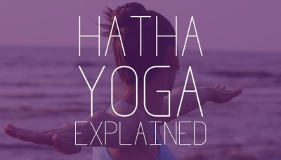 What-Is-Hatha-Yoga-101-733x420
