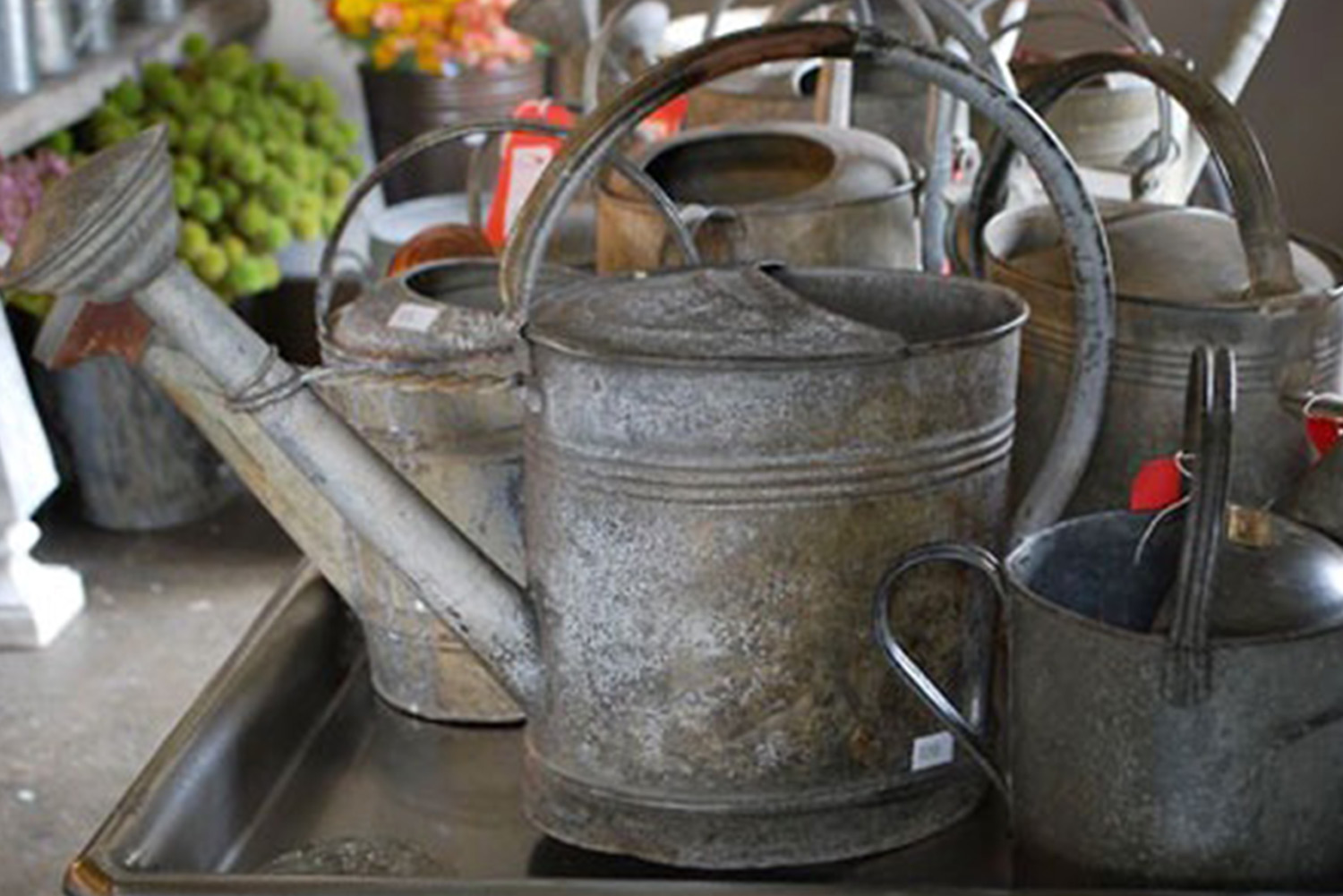 Vintage Watering Cans Detroit Garden Works