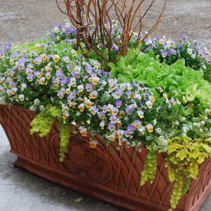 concrete-basketweave-planter-3