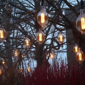 edison-lights-1