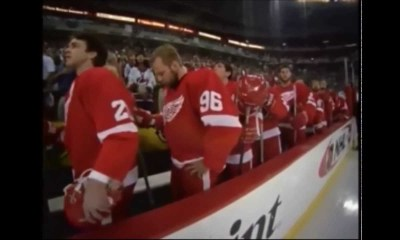 Red WIngs bench