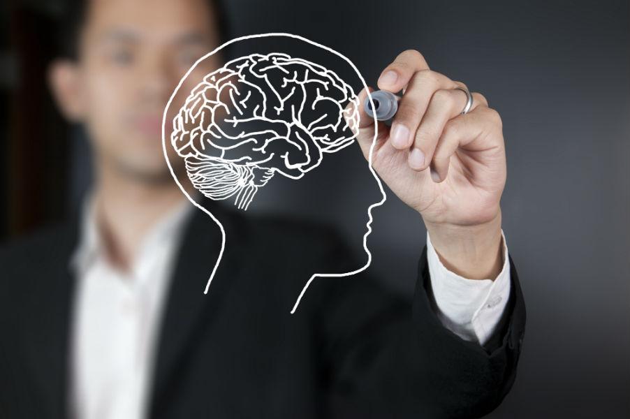 Как формируется образ мышления