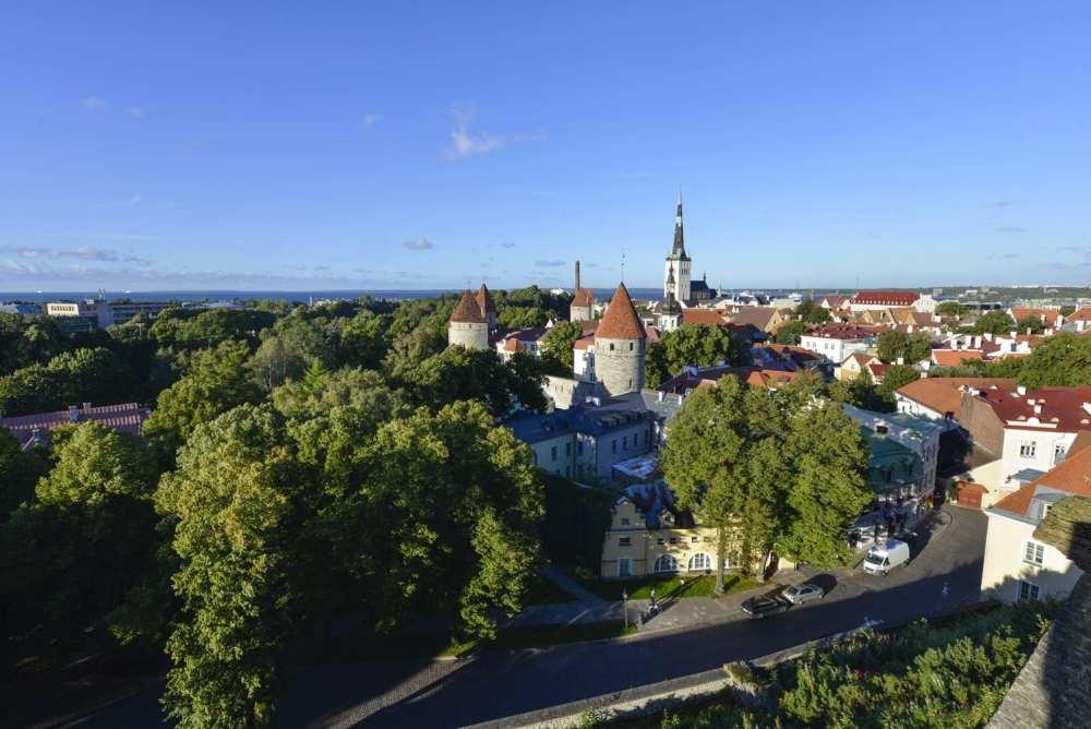 Tallinn Gamlebyen sett fra Patkuli.